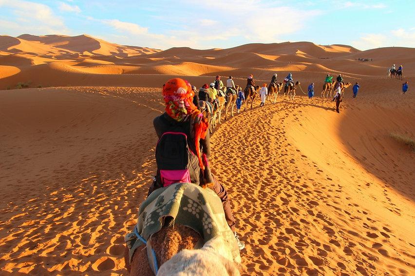 תמונה: בדואים  - טיולי גמלים |  מאתר: ארץ עיר טיולים |  יום כיף | ODT | טיולים בצפון | הפקת אירועים