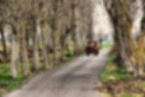 אגמון החולה| לטייל בגלויה | יום כיף |  טיולים במרכז | הפקת אירועים | טיול טרקטורונים | ODT | ארץ עיר טיולים