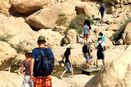 טיול קבוצות במדבר