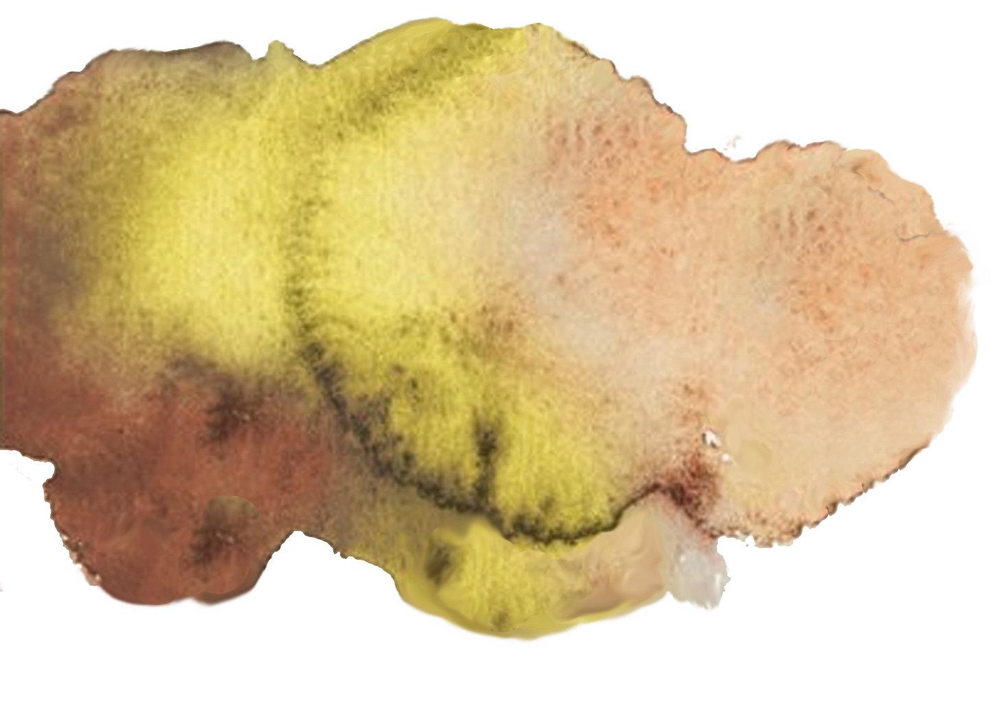 pigmentvlek3.jpg