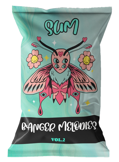 chips-bag-mockup-featuring-a-customizable-background-1538-el1 (6) (1).png
