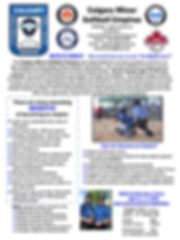 Umpire Brochure2020 1pg.jpg