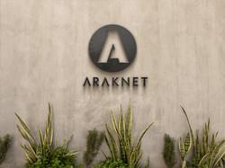 Araknet20.jpg