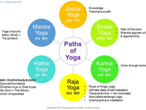 Principles of Yoga You Must Know