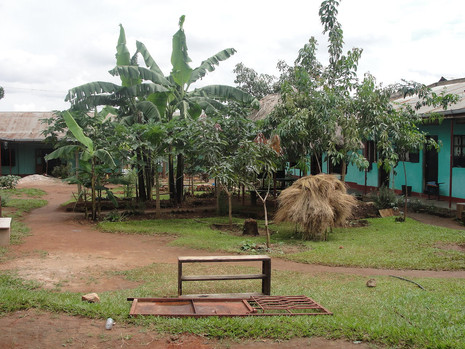 Kin compound from entrance