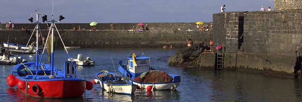 puerto de la cruz (44).jpg