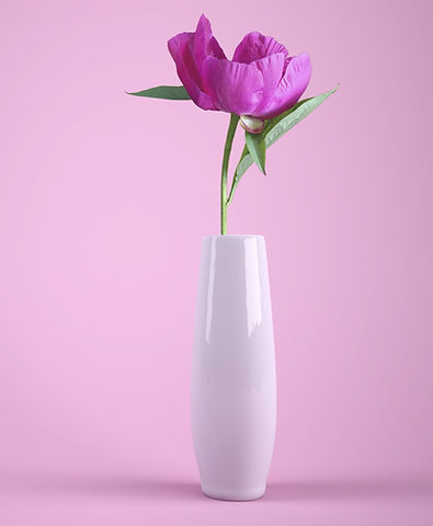 flower-3175428_1920 Image parYuri_B de P