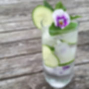 howe-hill-flower-farm-flower-ice-cubes-in-tulip-glass-with-cucumber-baby-nasturtium-leaves-and-mint