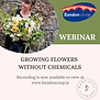 webinar_recording_flowers_without_chemic