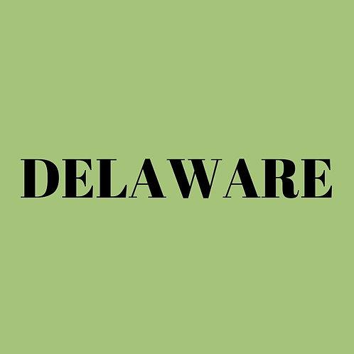 Delaware LLC - 1YO