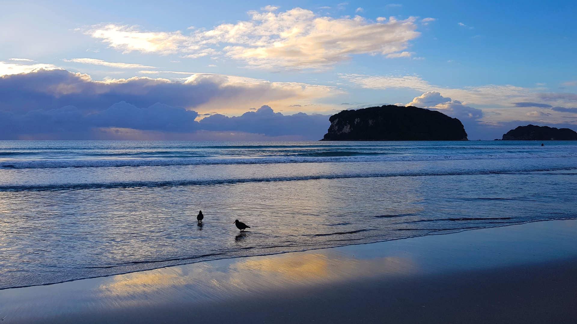 Whangamata - Welcome - Beach(1).jpg
