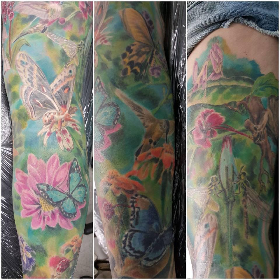 Todd Holley Butterflies
