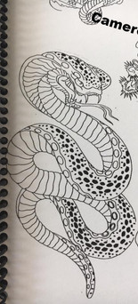 Cameon Price - Snake Special