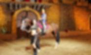 Катание на лошадях в Конном театре парка Ривьера