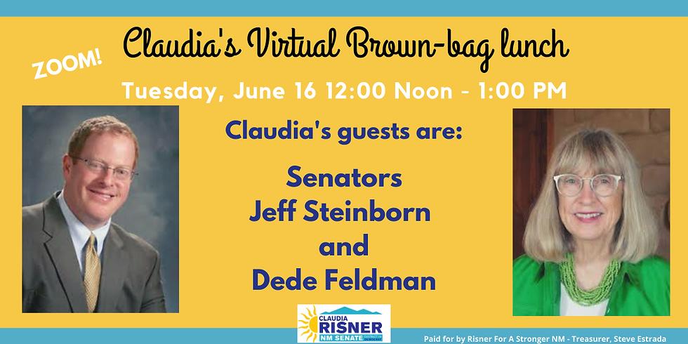 Brown-bag Lunch with Senator Steinborn and Former Senator Feldman