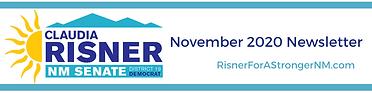 Novembe4r 2020 Newsletter Banner.png