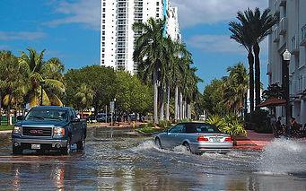 Steve-Rothaus-Miami-Herald.jpg