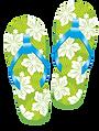 Flip Flops White on Green.png