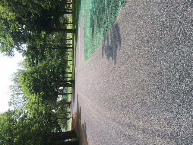 Porous asphalt, hydroseed