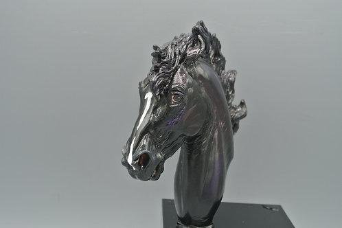 Bust - Baroque Stallion