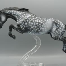 Star Dapple Grey Hunter
