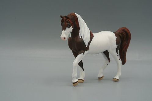 SM - Tobiano Arabian
