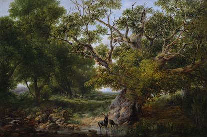 'Grazing Deer in Summertime'