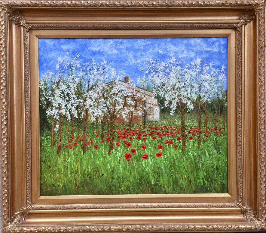 'Spring in Provence'