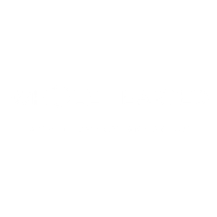 Wholehearted Events management