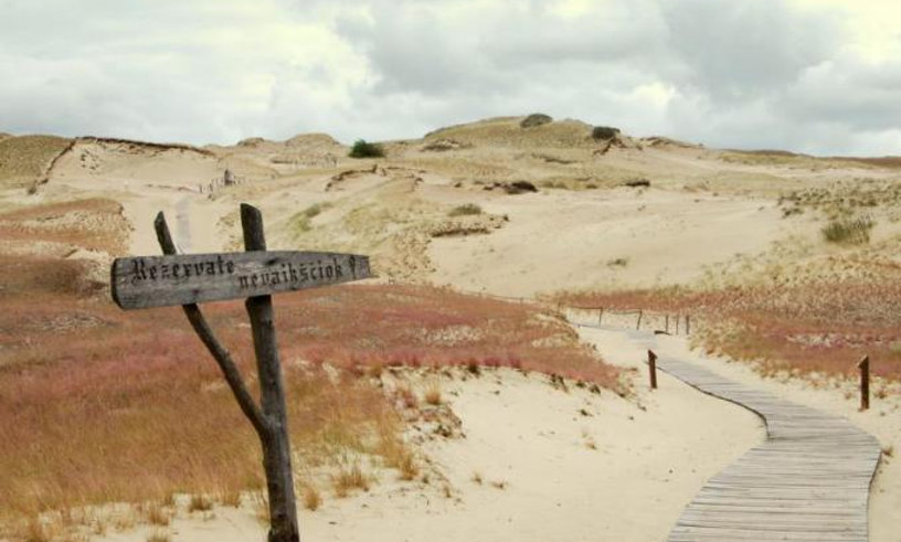 Full day tour to Curonian Spit