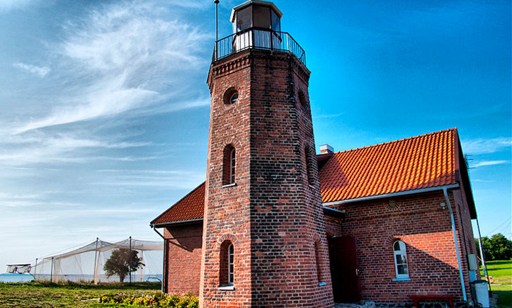 Full day tour along Curonian Lagoon - Tour for bird lovers