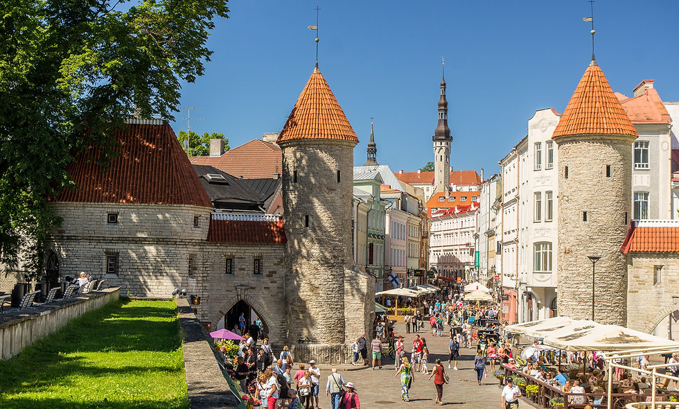 3 hours walking excursion in Tallinn
