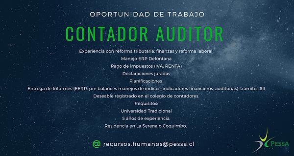 Contador Auditor.png