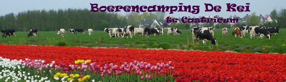 48 Boerencamping De Kei