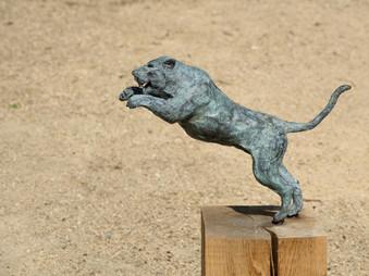 jaguar in bronze