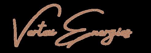 Vertex Energies logo for site use no bg