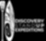 DSU logo Aug 13-2.png