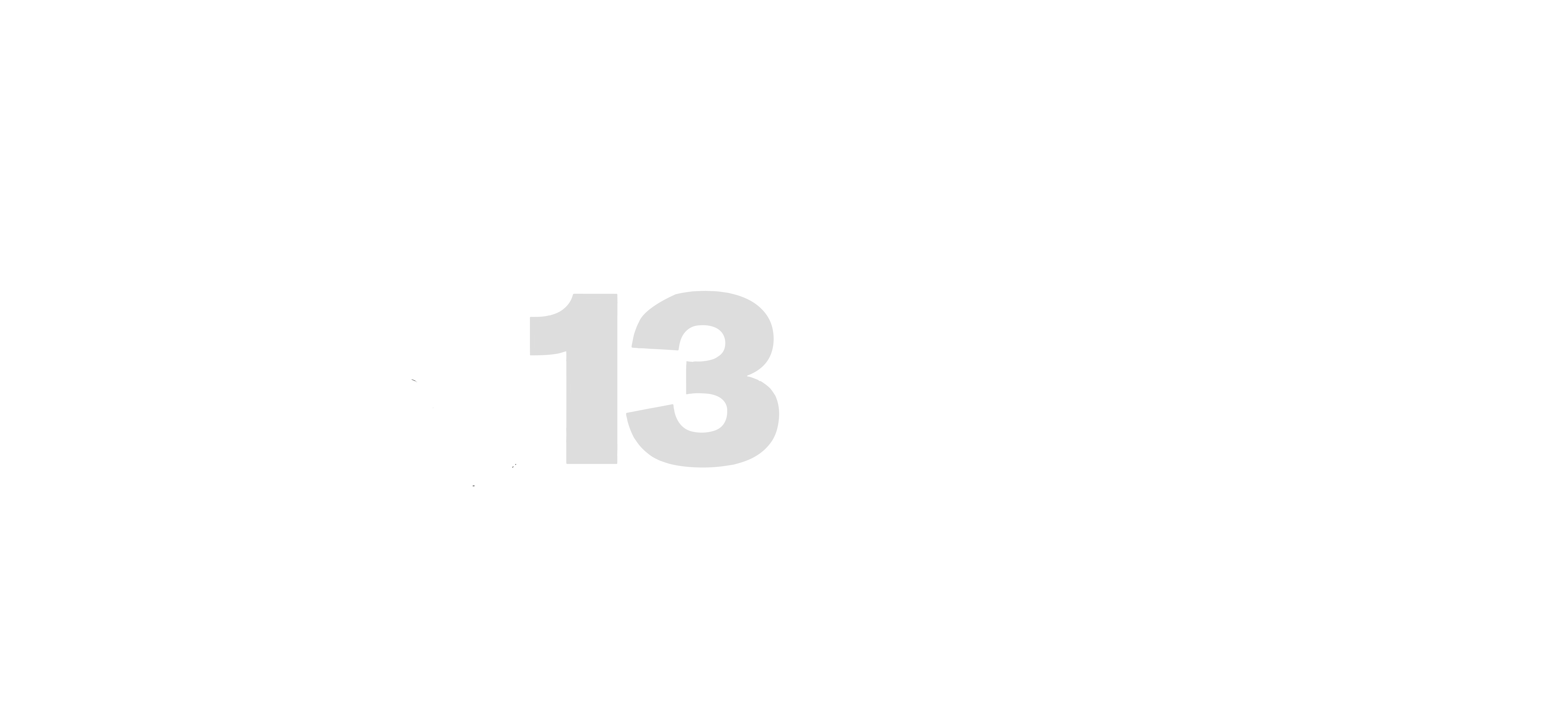 CHANNEL 13 NEWS FEATURE