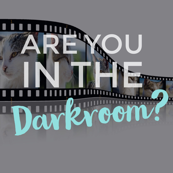 "Are you in the ""Dark Room""?"