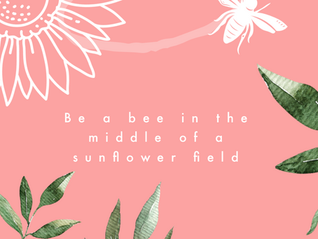 Be a bee in the middle of a sunflower field