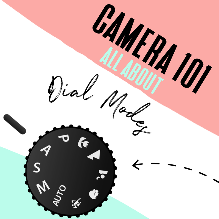Camera Setting 101: getting to know your dial