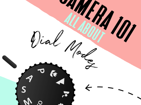 Camera settings 101: getting to know your camera dial