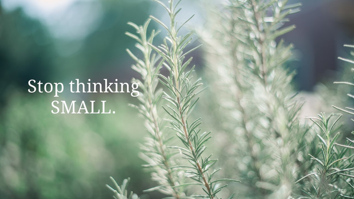 STOP Thinking Small