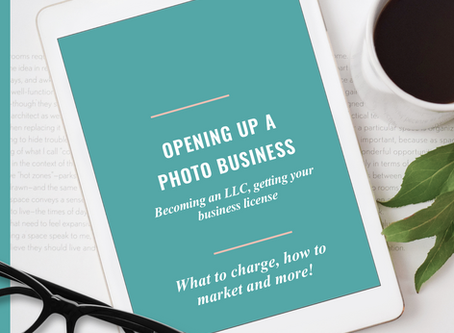 Opening up a photo business in VA - LLC paperwork, getting a license, what to charge and more