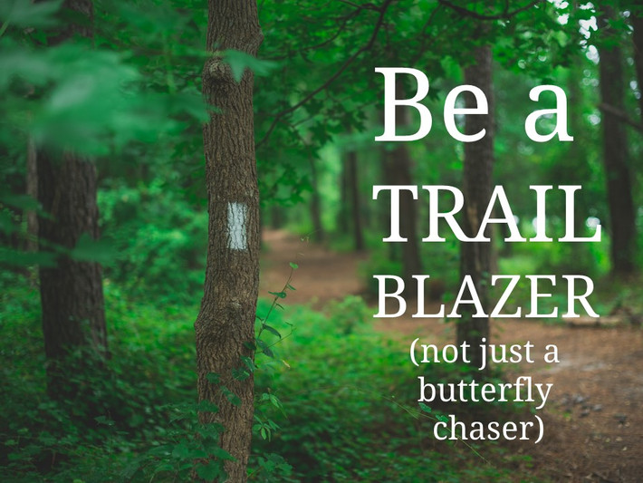Be a Trailblazer, not Just a Butterfly Chaser.