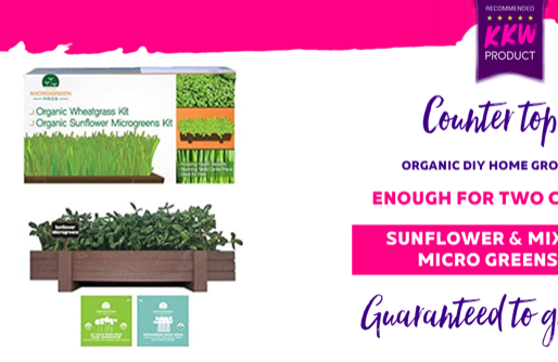 Grow these countertop Organic Microgreens from a super easy DIY kit- guaranteed to sprout