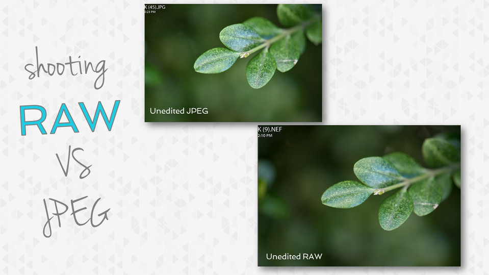 Shooting RAW VS JPEG- Which one is right for you?