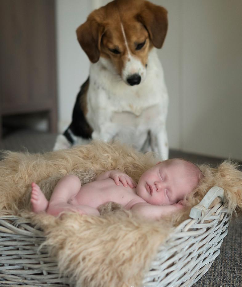 take five photography_newborn-6926.jpg