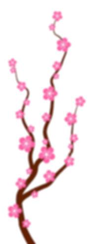 44204514-peach-oder-kirschblüten-baumast
