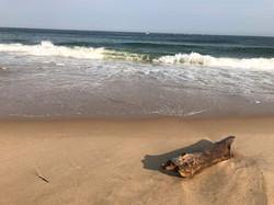 The Beach at the Ocean House